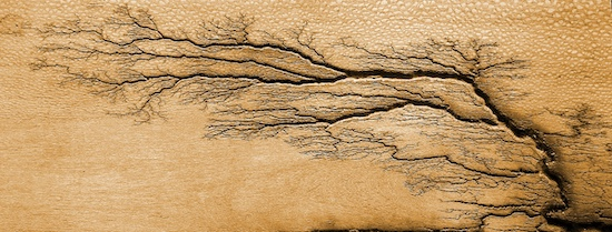 Lichtenberg figures grooved by electricity in wood (from Bdr9678@Wikipedia, CC BY-SA 4.0)