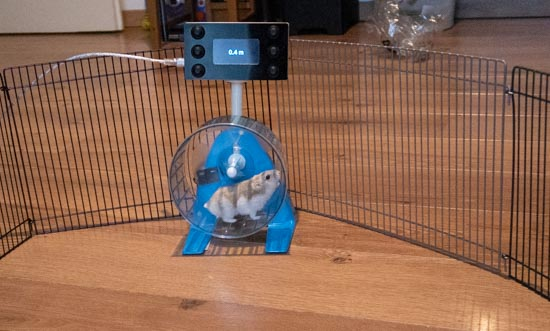 L'hamster en pleine session de jogging:-)
